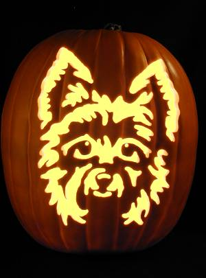 CATS-DOGS Carving Patterns
