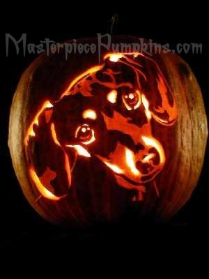 Cats Dogs Carving Patterns